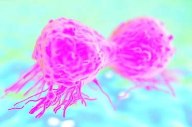 Cancer research: Are the drugs we count on based on bad science?
